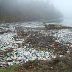Почему мы едим пластик?